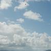 Makapuu Fly In-91
