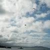 Makapuu Fly In-176