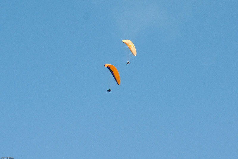 Makapuu Fly In-170