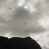 Makapuu Fly In-181