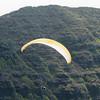 Paraglider Window-62