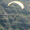 Paraglider Window-63