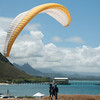 Paraglider Window-74