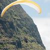 Paraglider Window-65