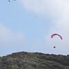 Jorge and Maui Doug Tandem Action-4