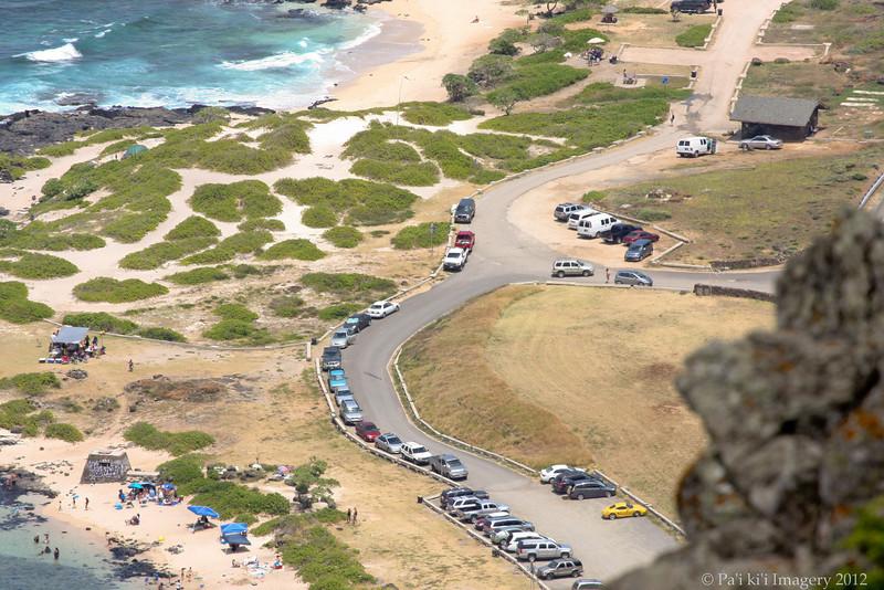 Jorge and Maui Doug Tandem Action-1