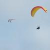Paragliding Invasion-218