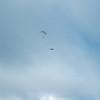 Paragliding Invasion-222