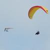 Paragliding Invasion-219