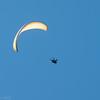 Easy Landing-7