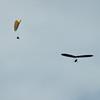 Super Sunday Flying-3