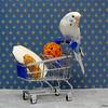 Milkdud doing some shopping
