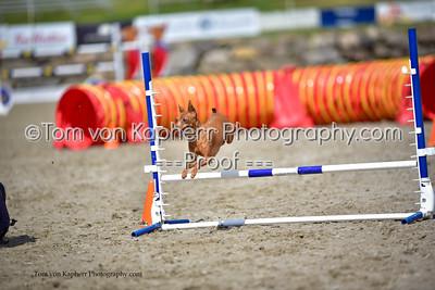 Tom von Kapherr Photography-5540