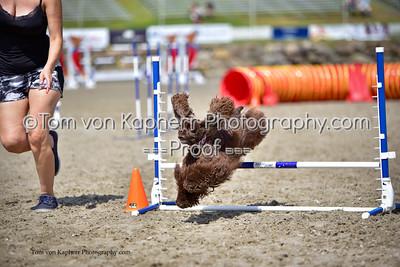 Tom von Kapherr Photography-5550