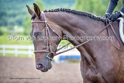 Tom von Kapherr Photography-6309