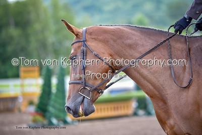 Tom von Kapherr Photography-6308
