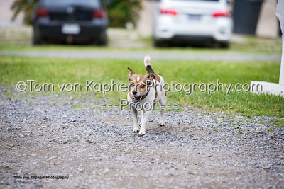 Tom von Kapherr Photography-0794