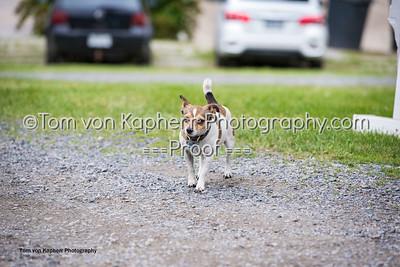 Tom von Kapherr Photography-0794