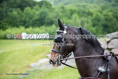 Tom von Kapherr Photography-0711