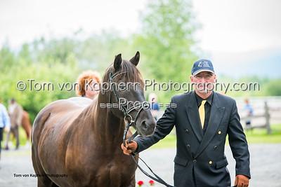 Tom von Kapherr Photography-1256