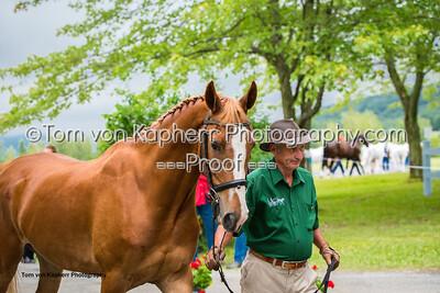 Tom von Kapherr Photography-0883