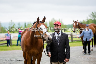 Tom von Kapherr Photography-0823
