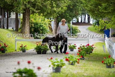 Tom von Kapherr Photography-1371