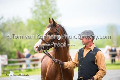Tom von Kapherr Photography-1288