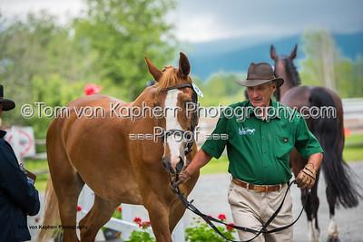 Tom von Kapherr Photography-0881
