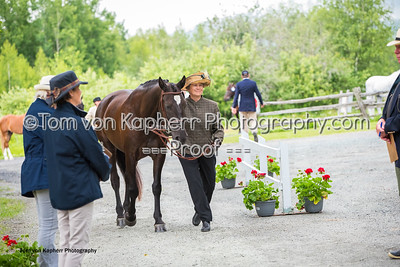 Tom von Kapherr Photography-0866
