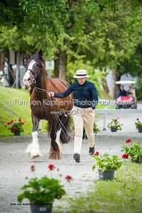 Tom von Kapherr Photography-1195