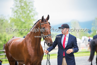 Tom von Kapherr Photography-0858