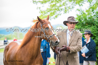 Tom von Kapherr Photography-1272