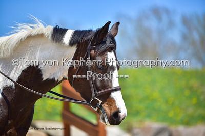Tom von Kapherr Photography-8385