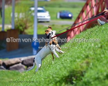 Tom von Kapherr Photography-8440