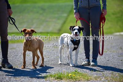 Tom von Kapherr Photography-8492