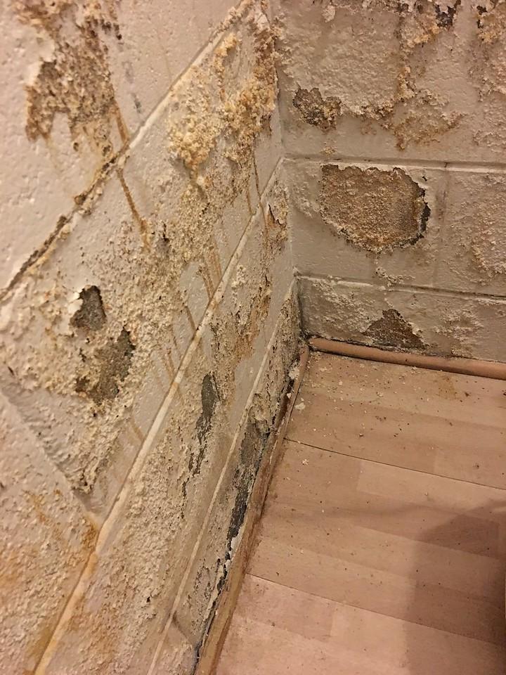 area of worst damage corresponds to exterior sprinkler pipe location
