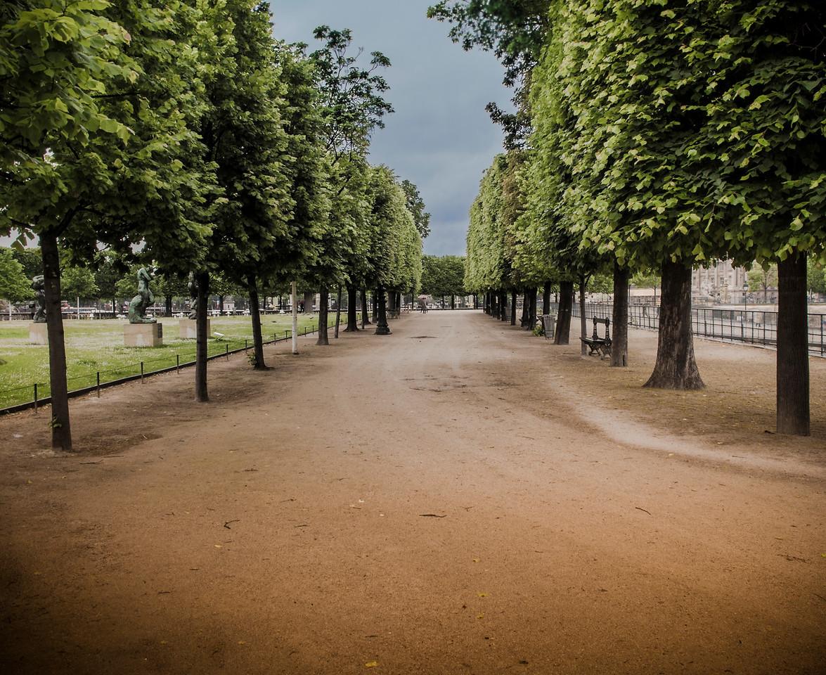 Tuileries Paris tree lined path