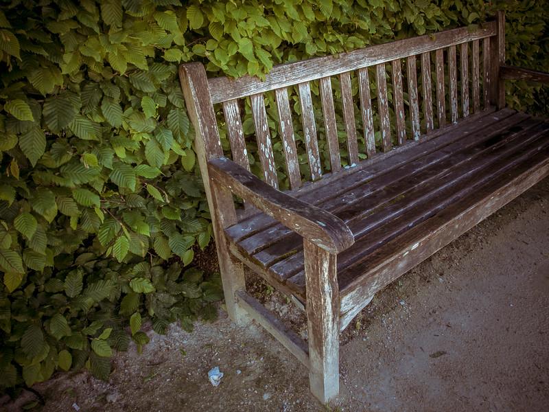 Bench in Rodin Garden