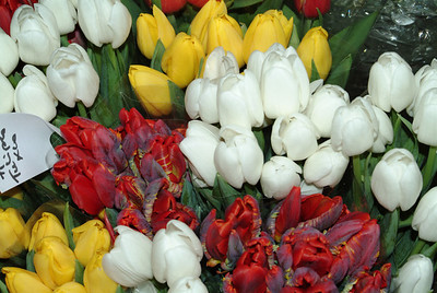 Paris Street Vendor Flowers