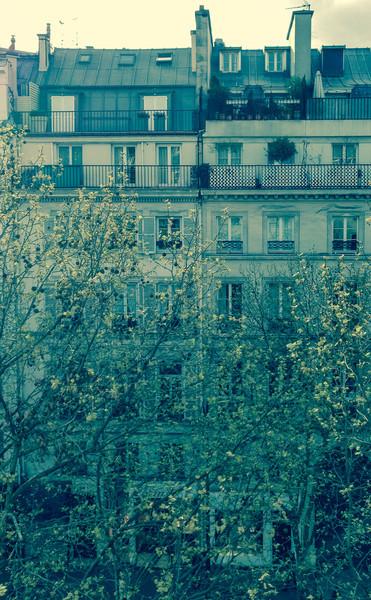 Paris rooftops, windows, and doors