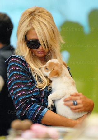 Paris Hilton fell in love with a little cute doggy in Beverly Glen,California.