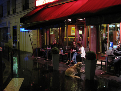 A brassierie near our hotel.  The french take their dogs everywhere.  The smaller dogs are allowed to go inside.