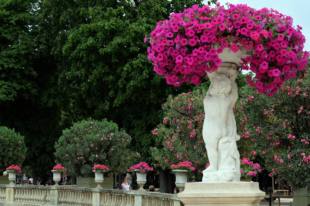 . Jardin du Luxembourg, Paris Photo by Shmuel Thaler