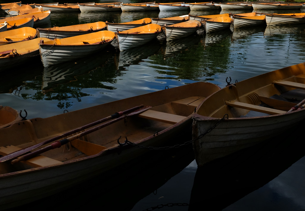 . Rowboats in the Parc Bois de Boulogne in Paris. Photo by Shmuel Thaler