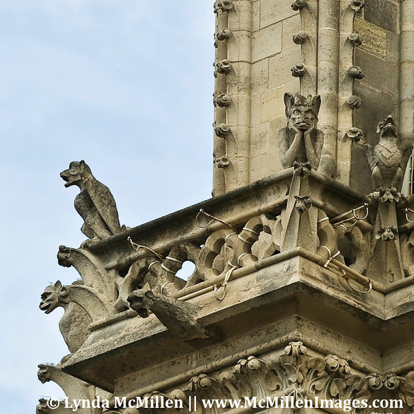 "The ""bored"" gargoyle, Notre Dame Cathedral."