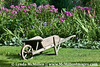 Monet's wheelbarrow