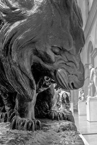 """""""Dans la gueule du lion."""" 2017"""
