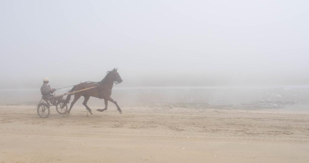Utah Beach in the fog