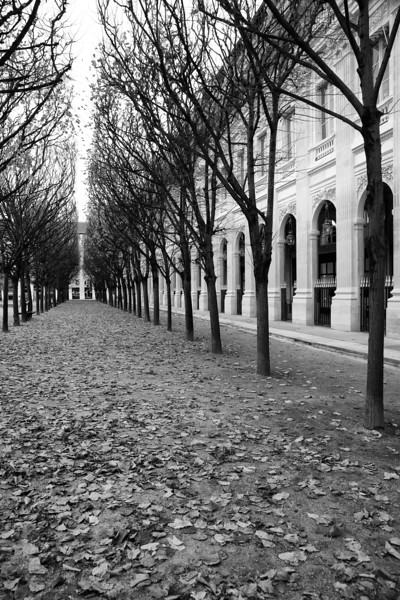 Paris Palais Royal